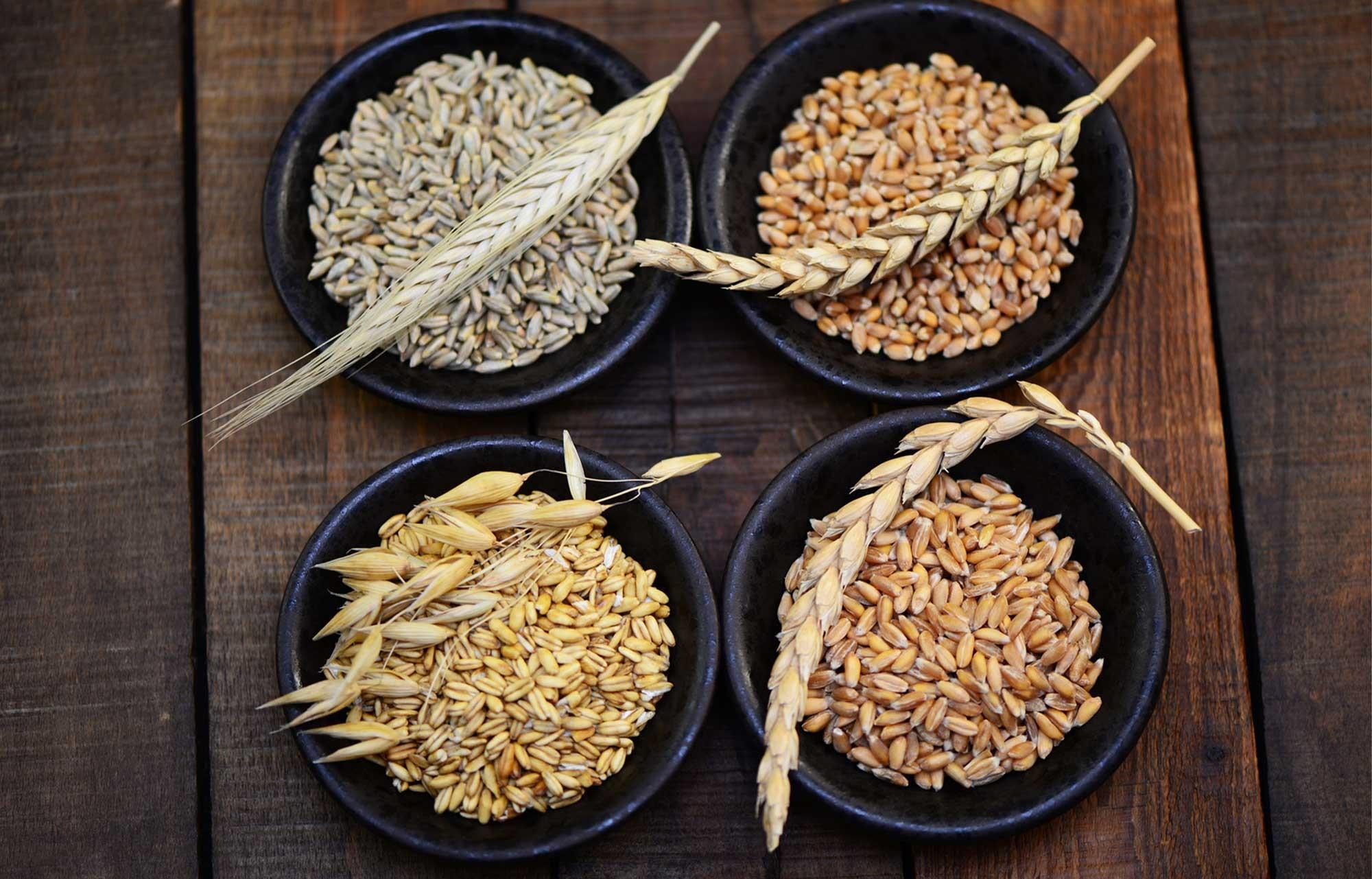 rodzaje mąk glutenowych